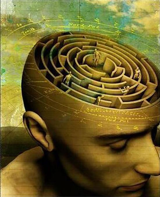 Мозг — это не ум, он всего лишь офис, где ум работает