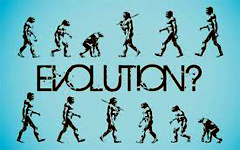 collapse-of-the-theory-of-evolution